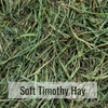 Soft Timothy Hay Closeup