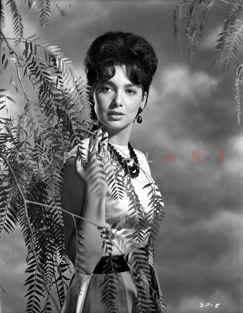 Watch Suzanne Pleshette video