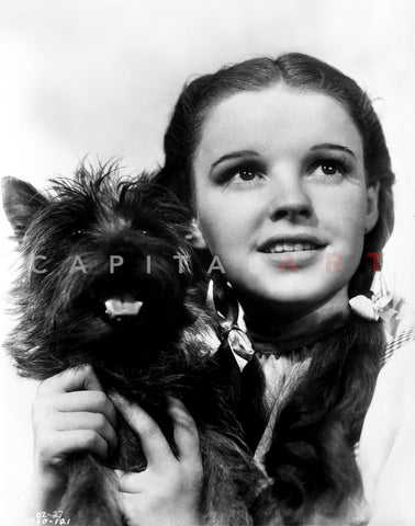 Dorothy Gale Holding Toto Wizard of Oz - Photograph Black & White Premium Art Print