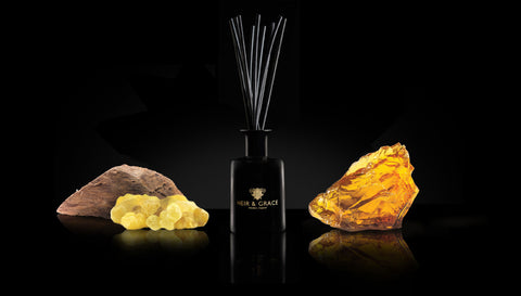 Oudh - Black & gold Reed diffuser