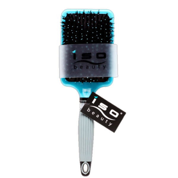 Paddle Brush | Accessory