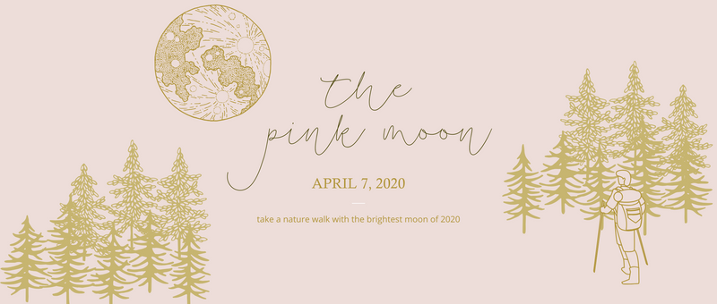 April 7th, 2020 - The Pink Moon