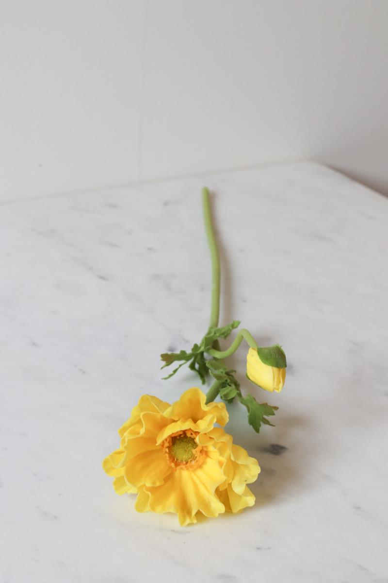 Yellow Poppy Pick