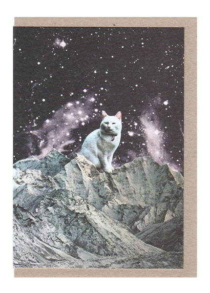 Wizard Cat Card