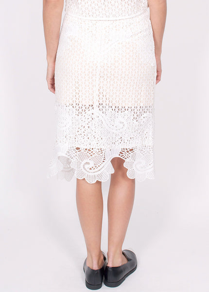 Musing Lace Skirt