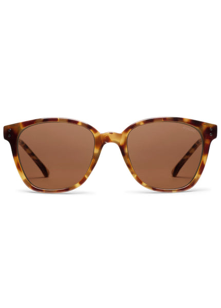Renee Sunnies