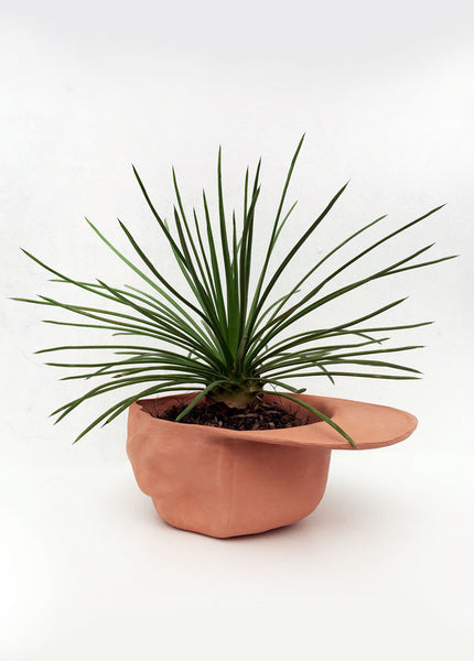 Hat Bowl Planter - Terracotta