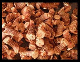 Galangal Powder  Bulk By The Ounce