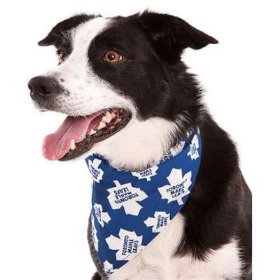 Official NHL® Team Wear for Dogs