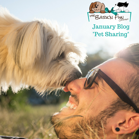 Barknfun January Blog