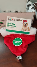 Load image into Gallery viewer, Santa Dog Bandana