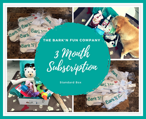 3 Month Subscription Plan, Standard Box