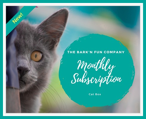Monthly Subscription Plan, CAT Box