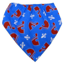 Load image into Gallery viewer, NHL Dog Quebec Nordiques by Togpetwear Official Licensee