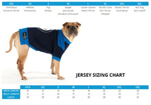 Load image into Gallery viewer, Official NHL® Dog Team Jersey - Edmonton Oilers