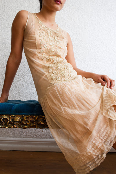 1920s Mocha Embroidered Lace Mesh Dress