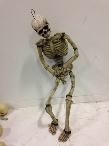 6 Ft Skeleton