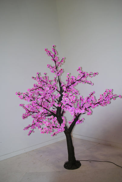 6' Japanese Cherry Blossom Tree