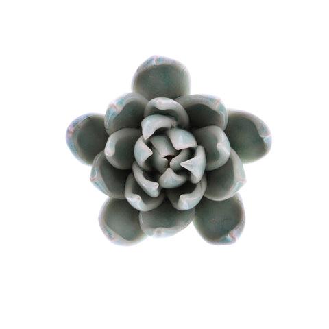 Ceramic Succulent small