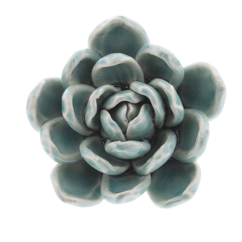 Ceramic Succulent medium