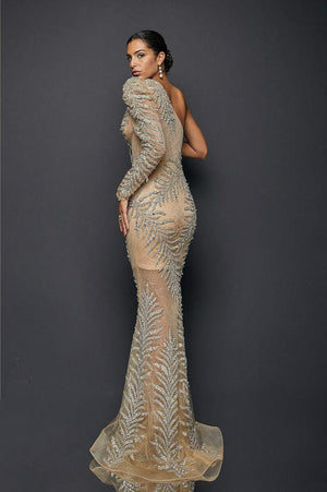 Exotic One Tulle Sleeved Sheer Mermaid Gown
