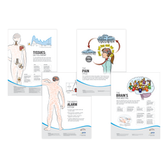 Fitness and Educational Posters