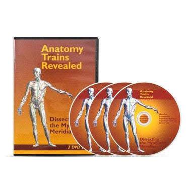 Anatomy Trains Revealed: Dissecting the Myofascial Meridians 3-DVD Set - PTconnect