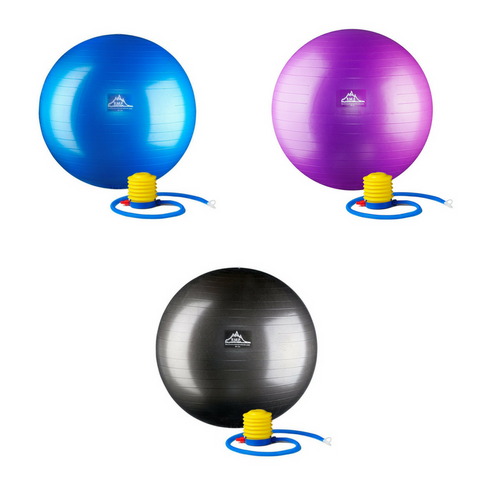 BMP Professional Grade Stability Ball - Pro Series