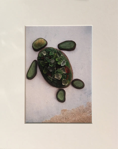 JAMES THE SEA TURTLE ~ 5 x 7 Print ~ Signed