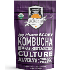 Big Momma Kombucha SCOBY Starter Culture