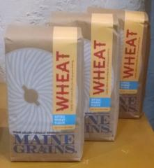 Maine Grains Organic Sifted Wheat Flour - 2.4lbs.