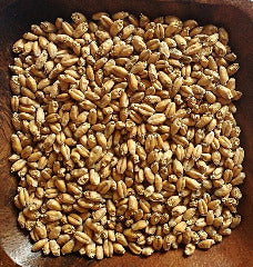 BLUE OX Wheat Malt