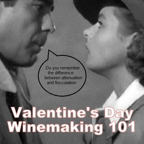 Valentine's Day Winemaking 101