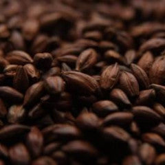 Coffee Malt