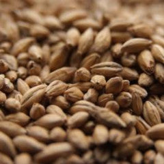 CaraBrown Malt