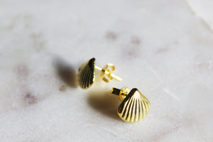 Arielle Shell Stud Earrings