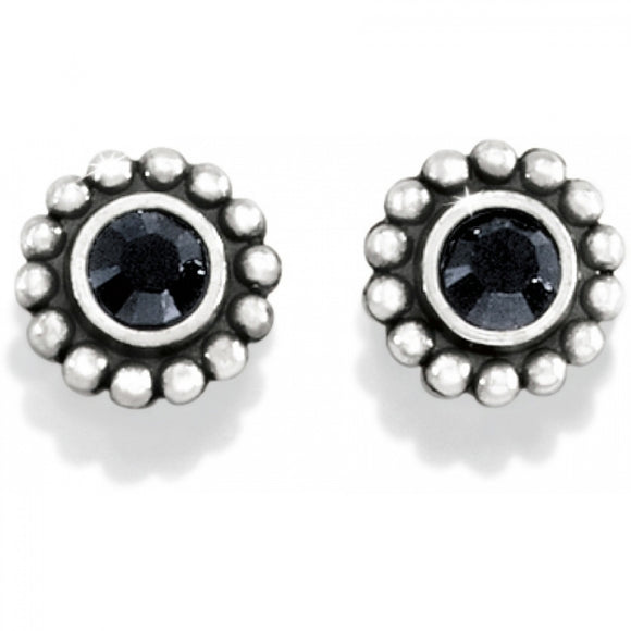 Twinkle Mini Post Earrings in Black
