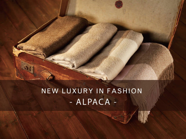 New luxury - Alpaca   /   新奢華主義 - Alpaca