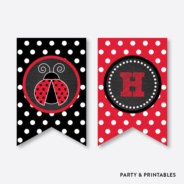 Lady Bug Chalkboard Party Banner / Happy Birthday Banner / Non-Personalized / Instant Download (CKB.26), party printables - Party and Printables
