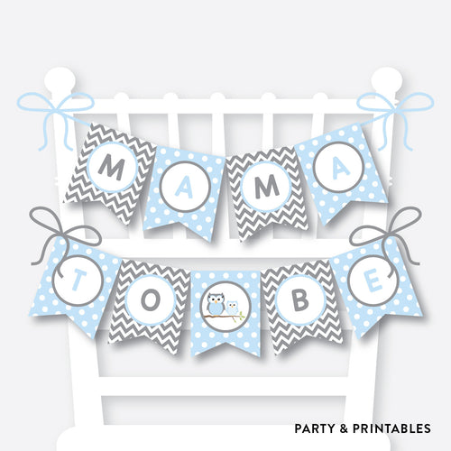 Blue Owl Chair Banner / Baby Shower Banner / Non-Personalized / Instant Download (SBS.43)