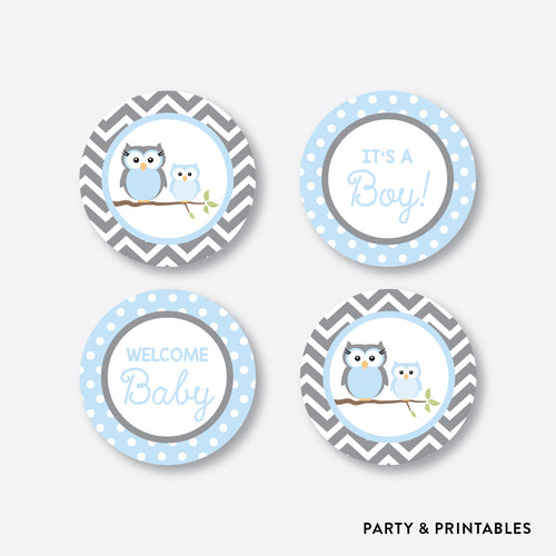 Owl Cupcake Toppers / Non-Personalized / Instant Download (SBS.43)