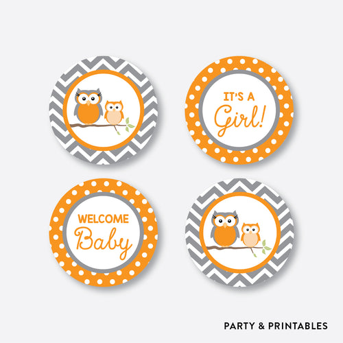 Owl Cupcake Toppers / Non-Personalized / Instant Download (SBS.47)