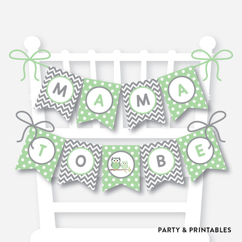 Green Owl Chair Banner / Baby Shower Banner / Non-Personalized / Instant Download (SBS.48)