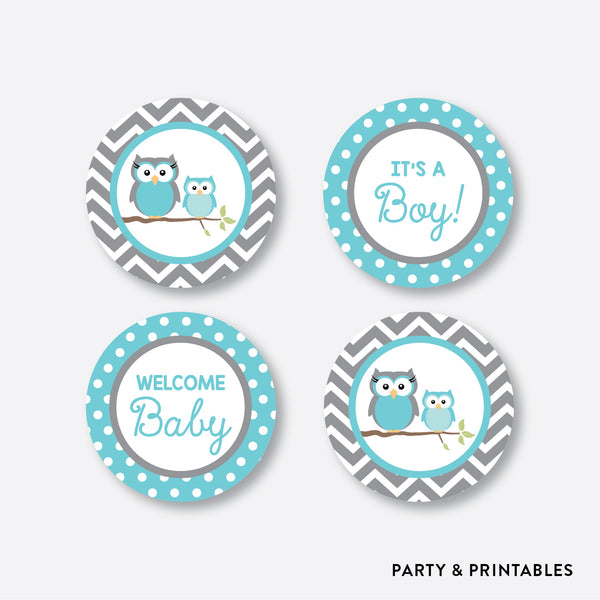 Owl Cupcake Toppers / Non-Personalized / Instant Download (SBS.50)