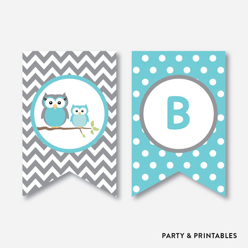 Aqua Owl Party Banner / Baby Shower Banner / Non-Personalized / Instant Download (SBS.50)