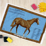 Anatomy Of A Horse Vintage Tea Towel