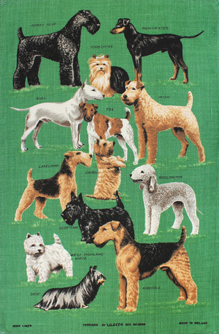 Terriers tea towel