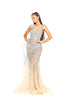 Portia & Scarlett Sammie - Crystal PS1960 Silver Nude evening dress prom shaide boutique uk