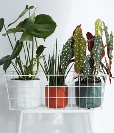 Recycled Plastic Planter Pot - White