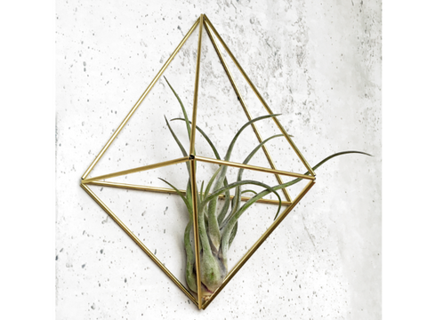 DIY wall planter Diamond - messing